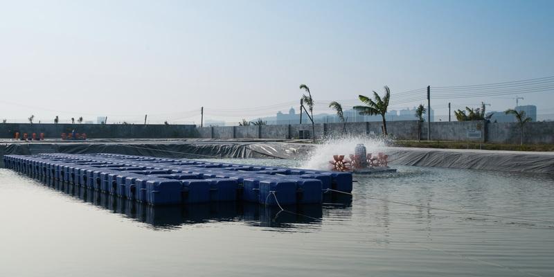 Vnější rybník na výzkumné stanici v Henzoubei