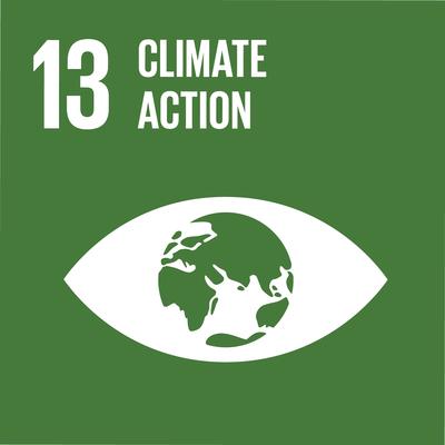 UN SDG 13 icon