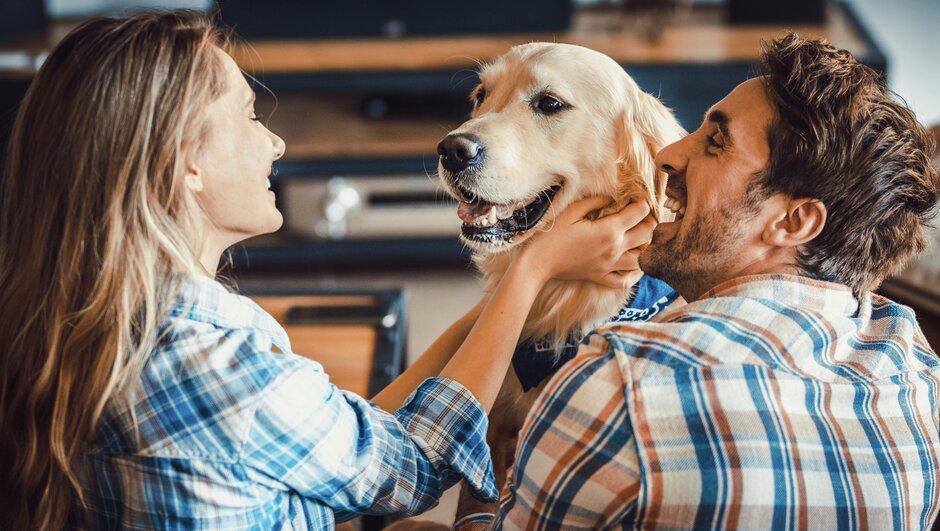 Pariskunta koiran kanssa.