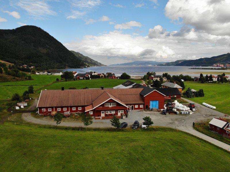 Ostehøvding fra Trøndelag