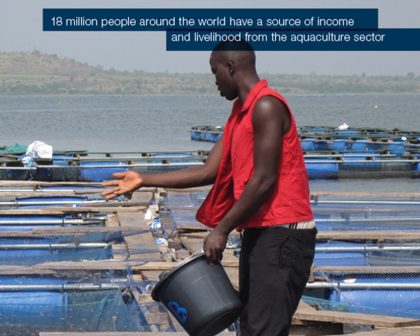 18 million people around the world have a source of income
