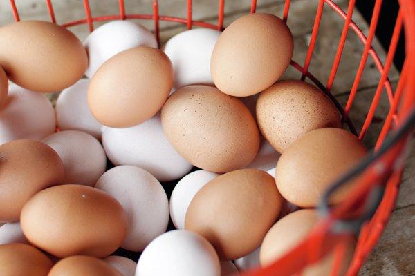 Egg Holte gård