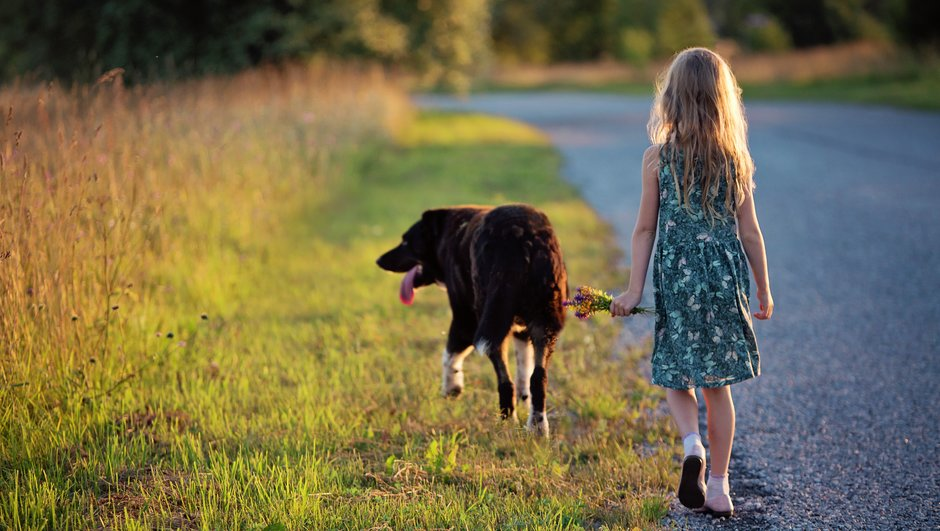barn och hund går längs väg