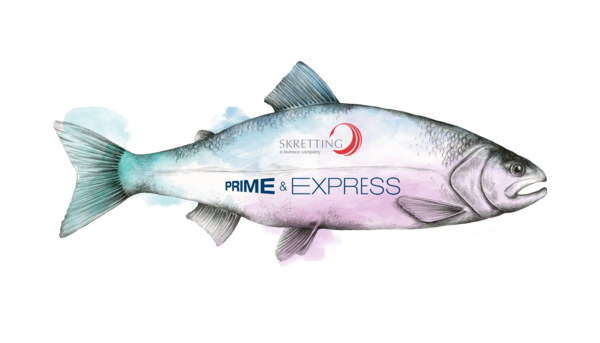 Prime & Express Illustration