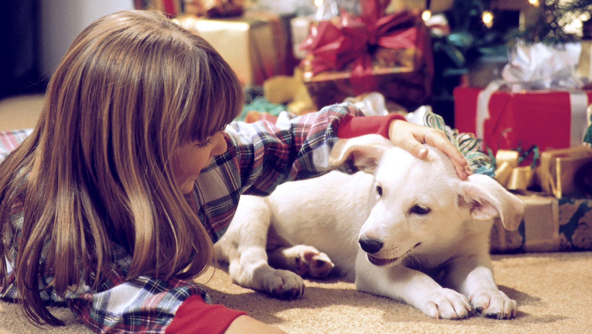barn och valp vid julklappar