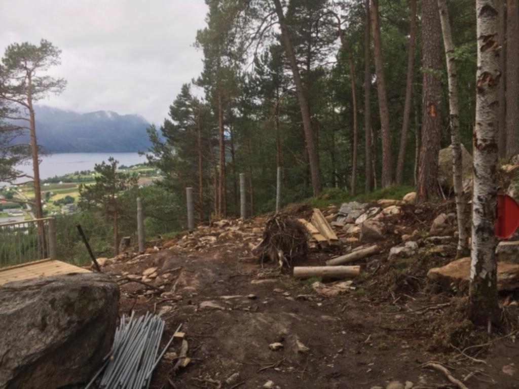 Foto frå tomta for dagsturhytta i Gloppen. Hytta skal liggje på Draumekvila i Trivselsskogen på Sandane. Biletet syner at kommunen er i gang med klargjering av tomta. Vi ser at det er rydda skog, og at det opnar seg ein plass for hytta.
