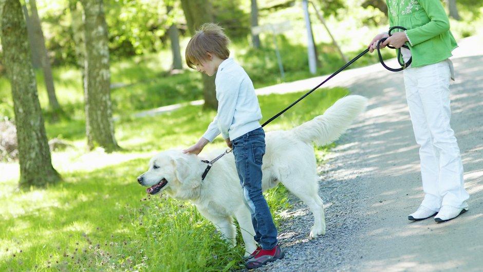 Barn rastar hunden