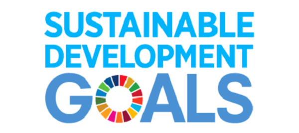 The UN Sustainable Developement Goals