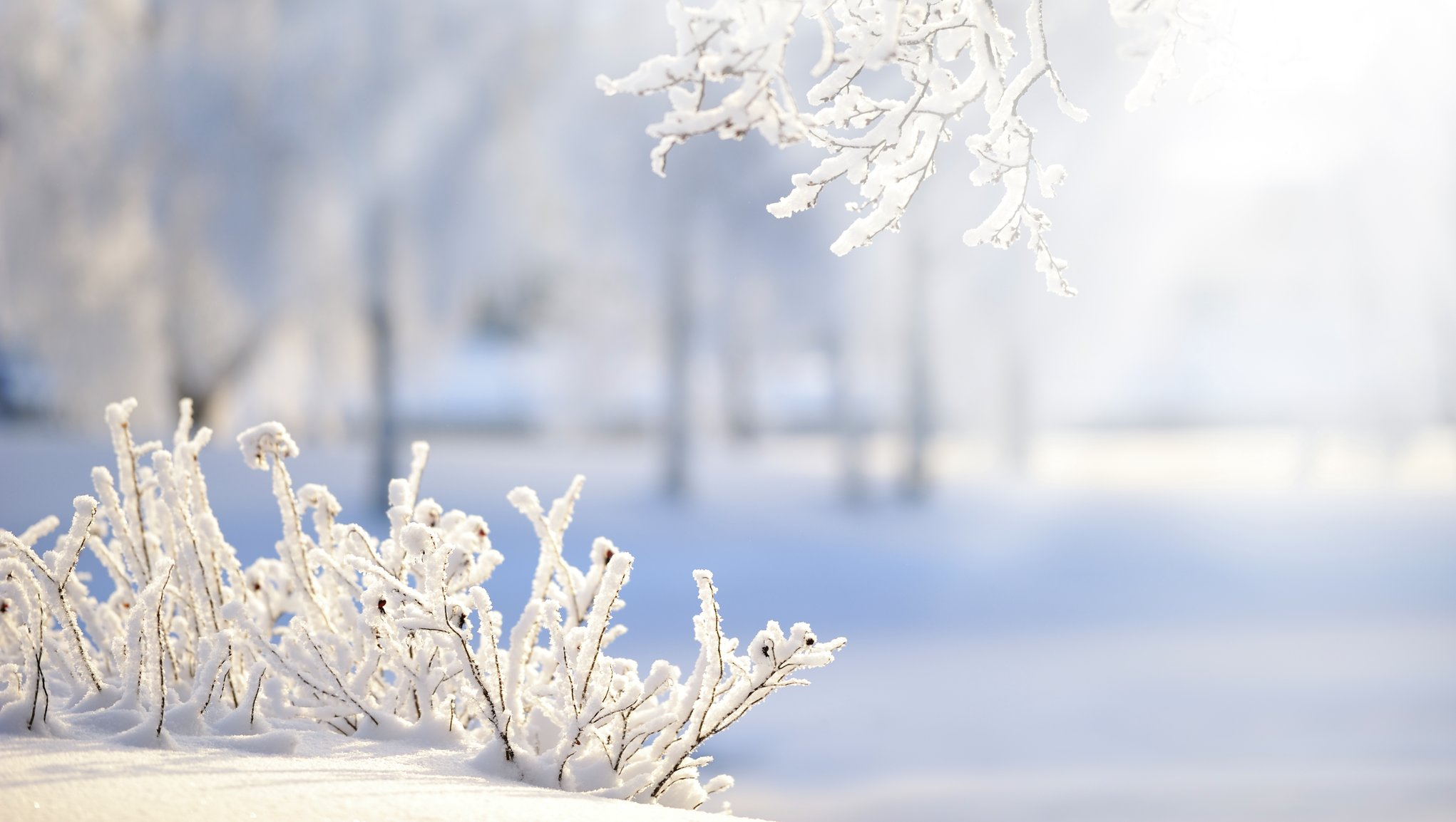 Säkrare vinter