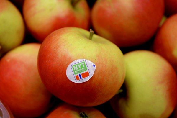 Norske epler Nyt Norge