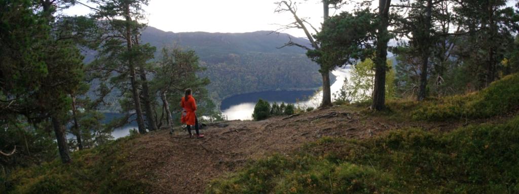 Dagstruhyttetomta utsikten i Sogndal kommune