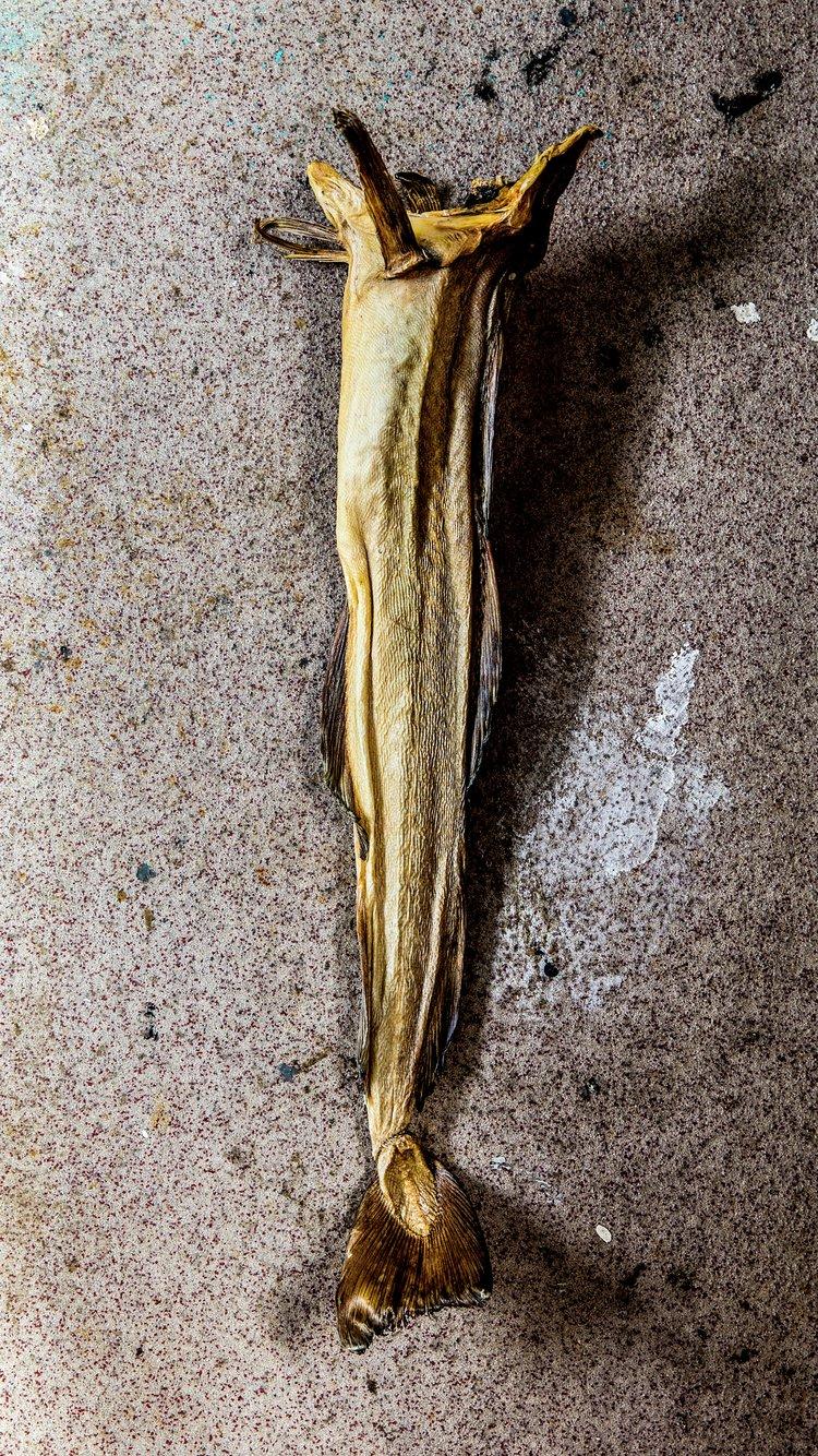 Tørrfisk fra Lofoten. Foto: Stian Broch/Matmerk