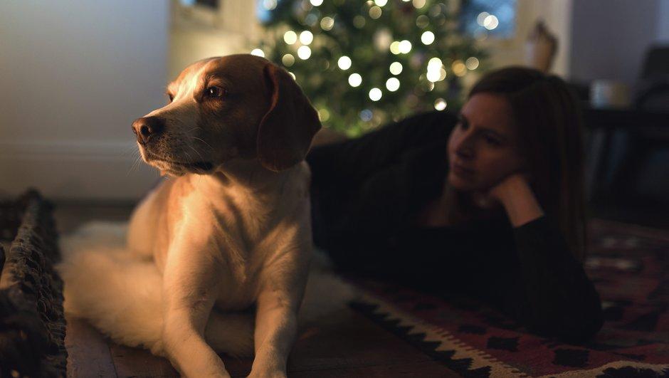 hund och hundägare vilar vid julgran