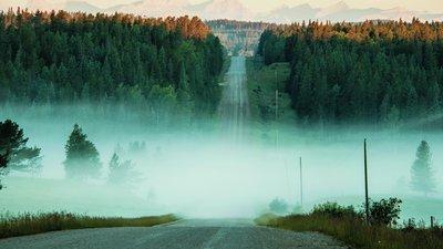 dimma över väg