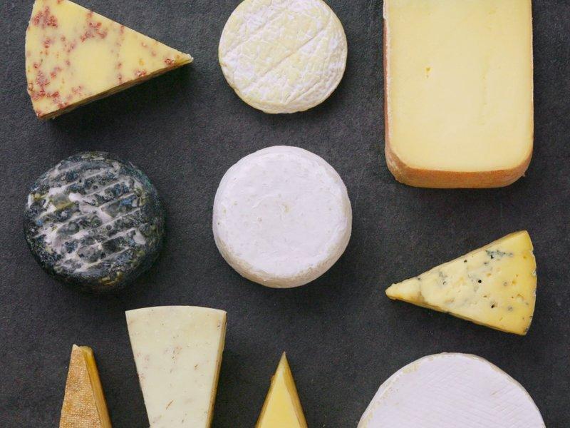 Oster med spesialitet-merket. Spesialitet oster norsk ost