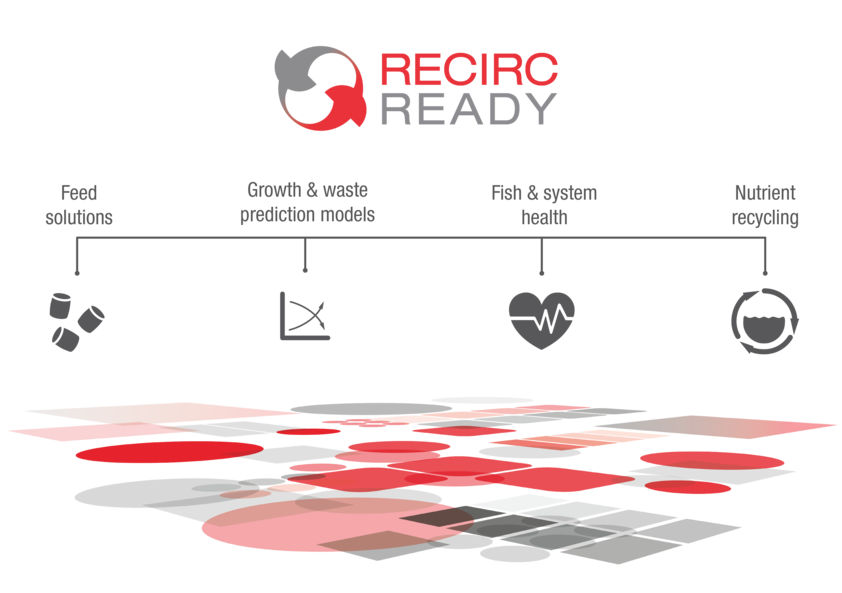 feed the fish, feed the system: skretting's recircready concept set to  maximise ras potential