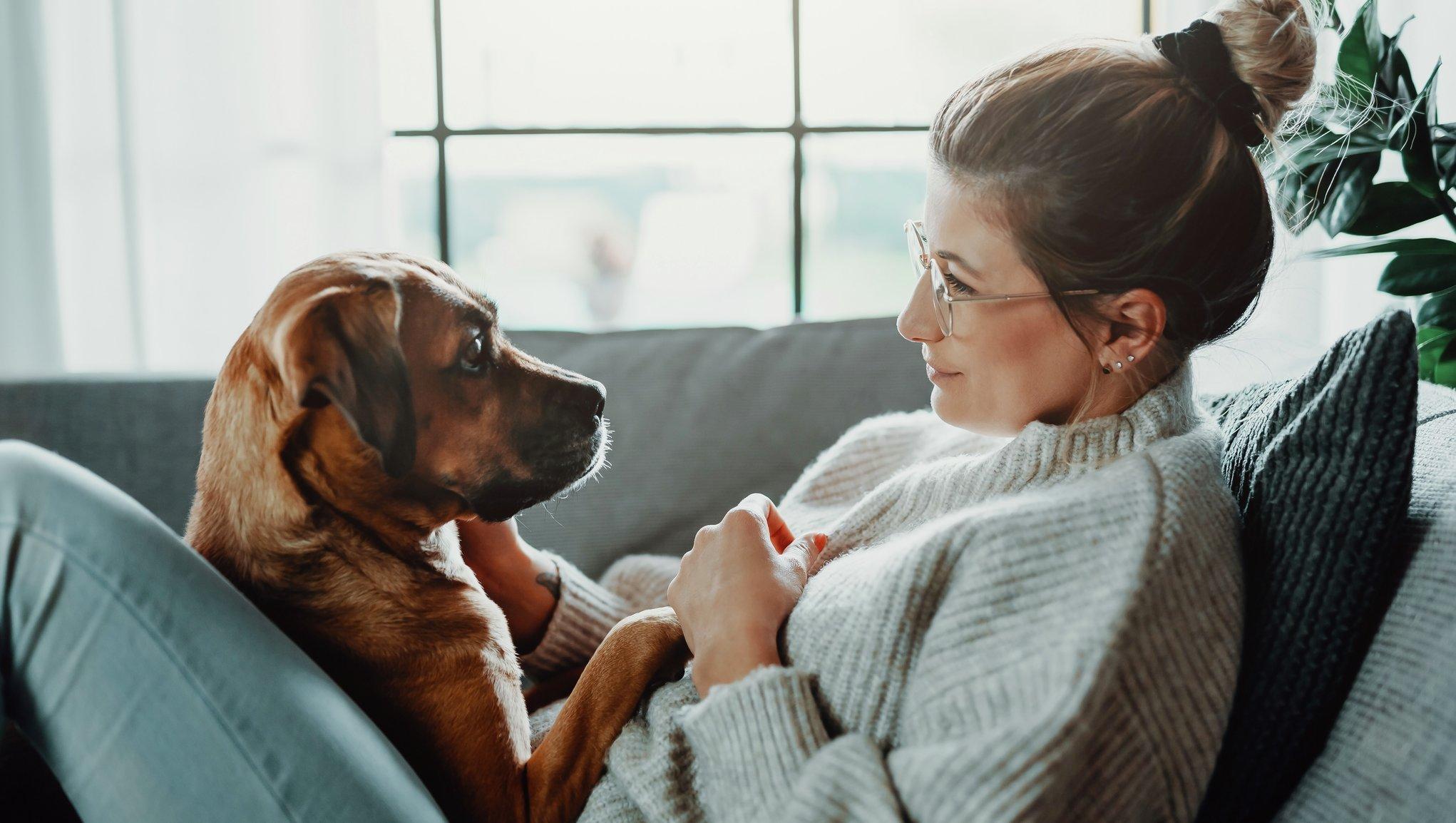 Kvinna med hunden i knät